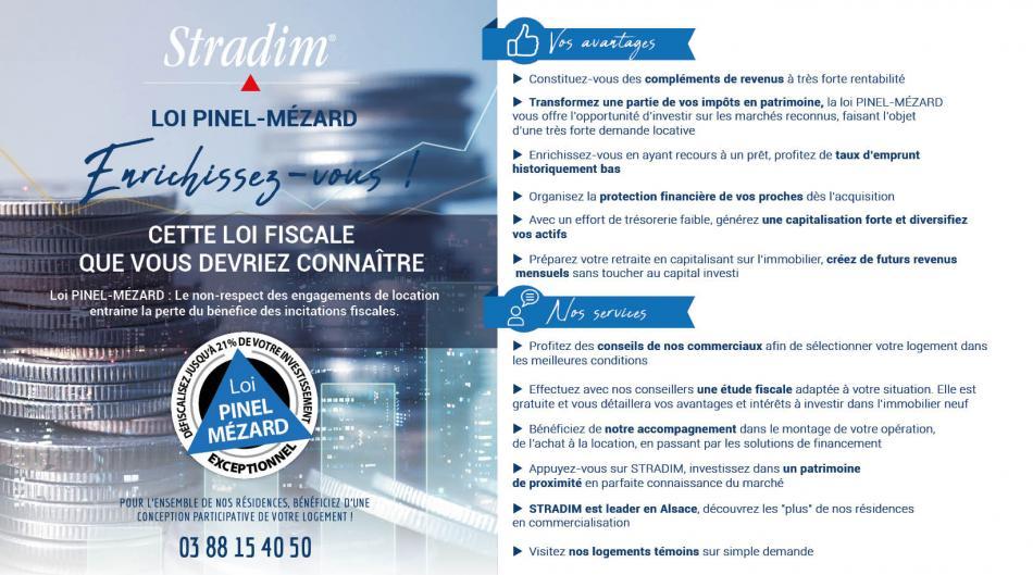 Loi Pinel-Mézard